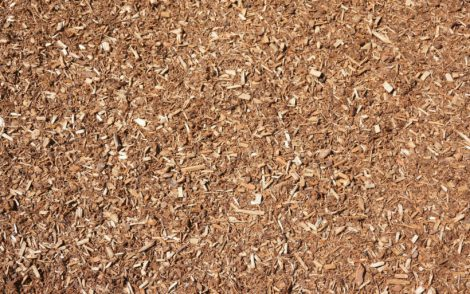 pallet-mulch